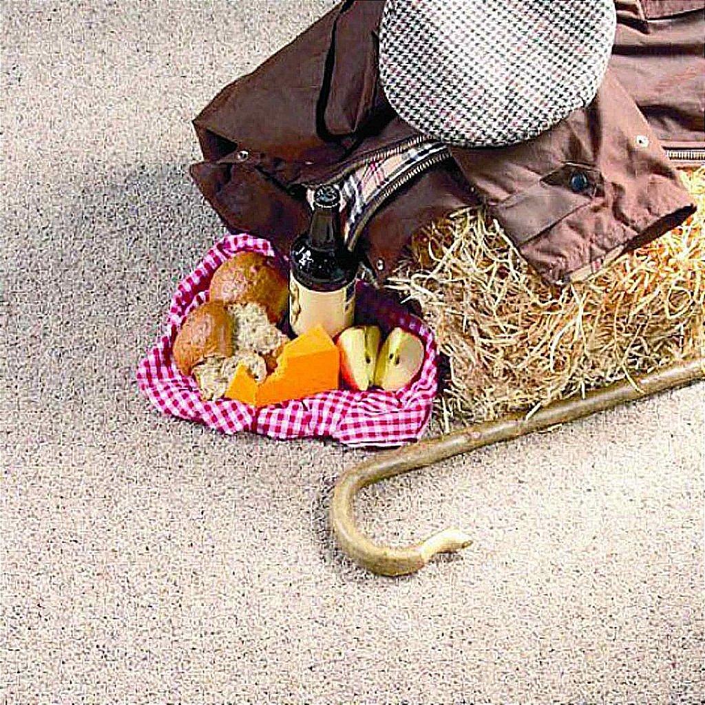 Flooring One Autumn Twist Carpet