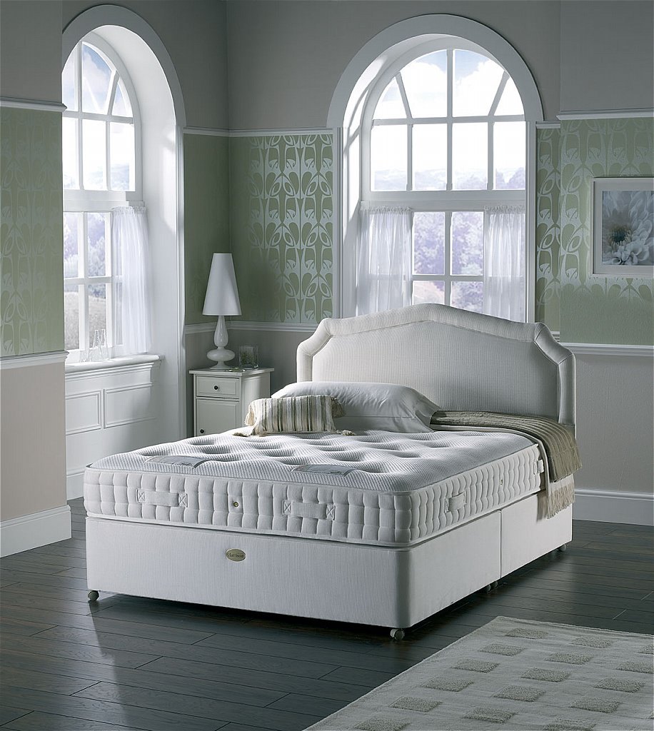 Harrison Beds Dreamworld Executive Adagio Divan