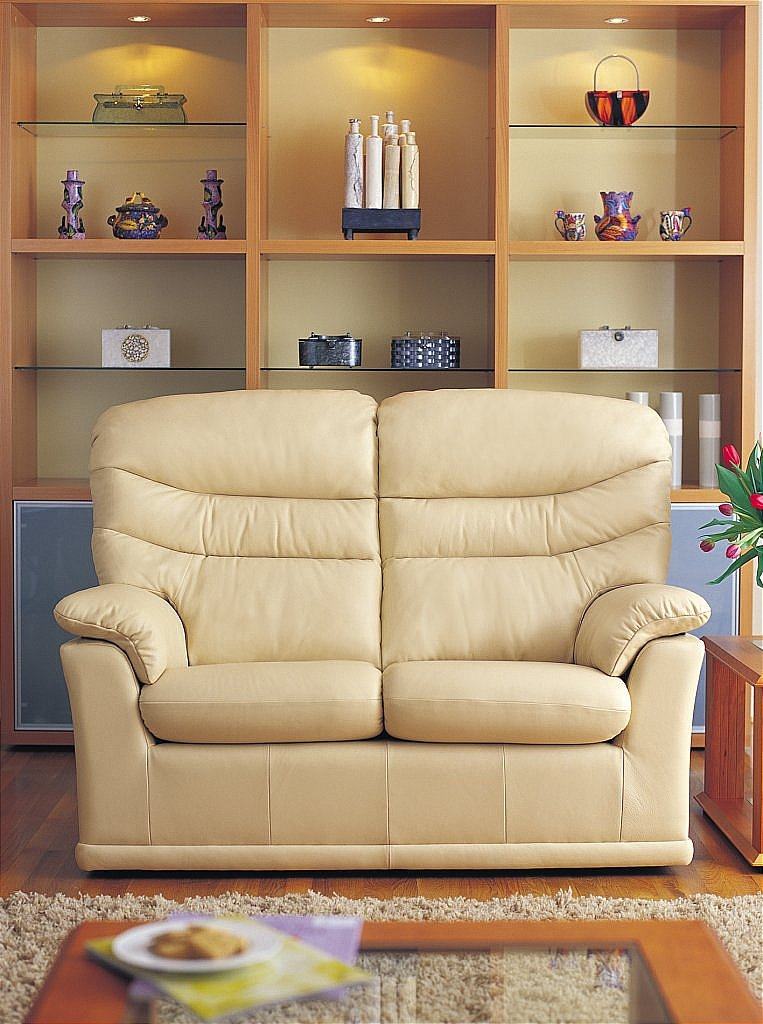 G Plan Upholstery Malvern 2 Seater Leather Sofa