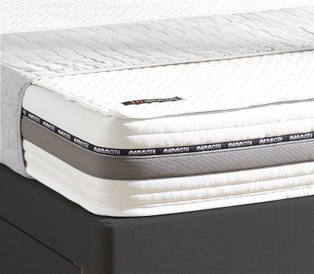 Adjustable 22 Mattress