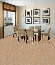 3062/Flooring-One-Burnham-Heathers-Carpet