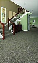 3405/Flooring-One-Caravelli-Carpet-Carbon