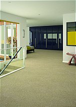 3459/Flooring-One-Vivacious-Elite-Carpet
