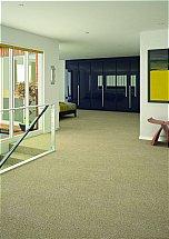 3459/Flooring-One-Vivacious-Elite-Carpet