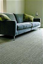 3996/Crucial-Trading-Sisal-Oriental-Silver-Carpet