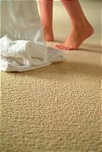 4130/Flooring-One-Dream-Touch-Carpet