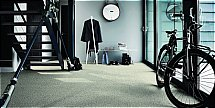4524/Flooring-One-Acclaim-Saxony-Carpet