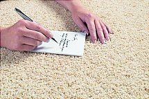 4564/Flooring-One-Temptress-Carpet