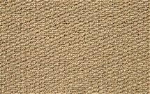 Flooring One - Aruba Carpet