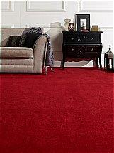 Flooring One - Corona Carpet