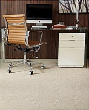 4645/Flooring-One-Sandown-Carpet