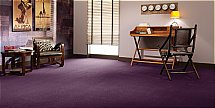 Flooring One Panache Elite Carpet